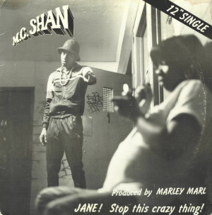 MC Shan – Jane, Stop This Crazy Thing / Cocaine (VLS) (1986) (320 kbps)