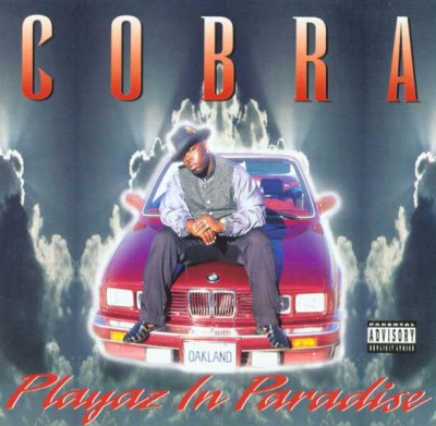 Cobra - Playaz In Paradise