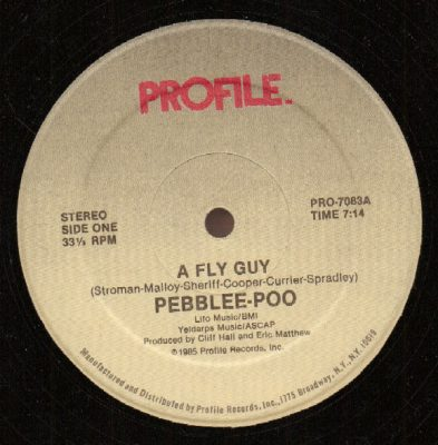 Pebblee-Poo ‎– A Fly Guy (VLS) (1985) (256 kbps)