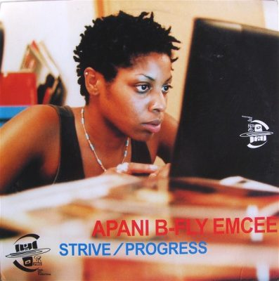 Apani B-Fly Emcee ‎– Strive / Progress (VLS) (2000) (320 kbps)