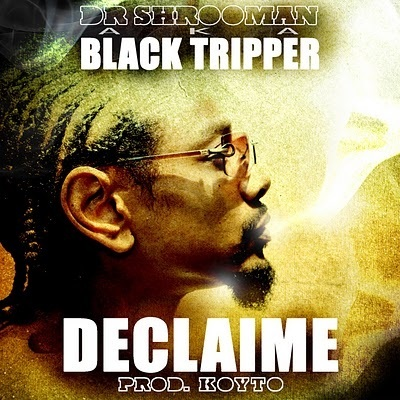 Declaime – Dr. Shrooman Aka Black Tripper (CD) (2010) (320 kbps)