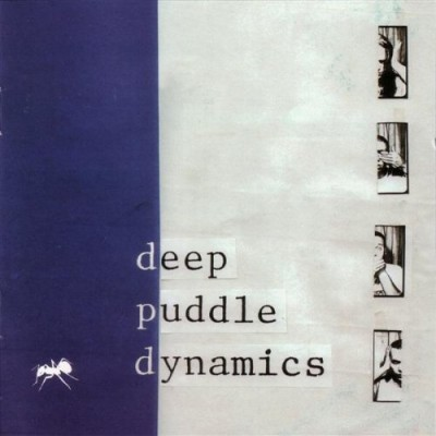 Deep Puddle Dynamics – The Taste Of Rain…Why Kneel (Reissue CD) (1999-2002) (FLAC + 320 kbps)