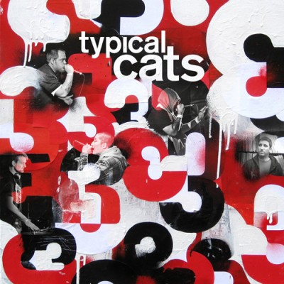 Typcail Cats - 3