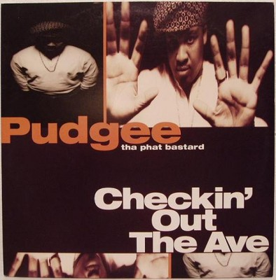 Pudgee Tha Phat Bastard – Checkin' Out The Ave. (VLS) (1993) (320 kbps)