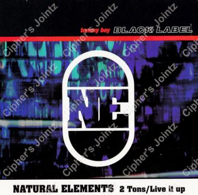 Natural Elements – 2 Tons / Live It Up (CDS) (1999) (320 kbps)