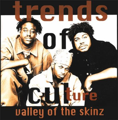 Trends Of Culture – Valley Of The Skinz (CDS) (1993) (FLAC + 320 kbps)