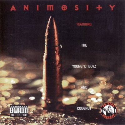 young-d-boyz-and-cougnut-animosity