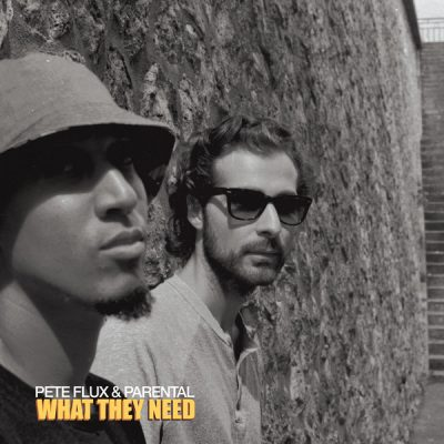 Pete Flux & Parental – What They Need EP (WEB) (2017) (320 kbps)