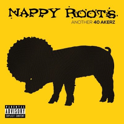 Nappy Roots – Another 40 Akerz (WEB) (2017) (320 kbps)