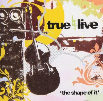 True Live – The Shape Of It (CD) (2006) (FLAC + 320 kbps)