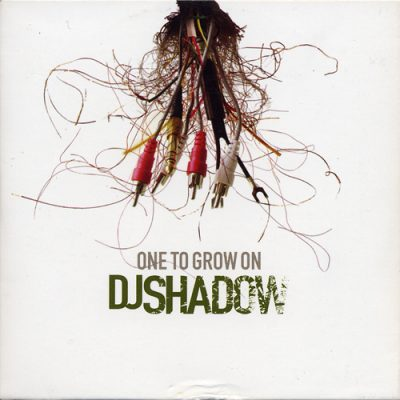 DJ Shadow – One To Grow On (2001) (Promo CD) (FLAC + 320 kbps)