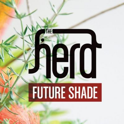 The Herd – Future Shade (CD) (2011) (FLAC + 320 kbps)