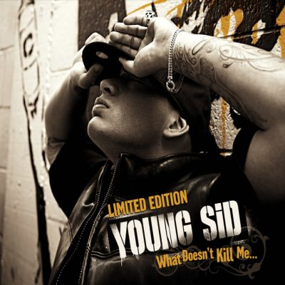 Young Sid – What Doesn't Kill Me… (CD) (2010) (FLAC + 320 kbps)