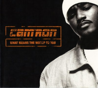 Cam'ron – What Means The World To You (CDS) (2000) (FLAC + 320 kbps)