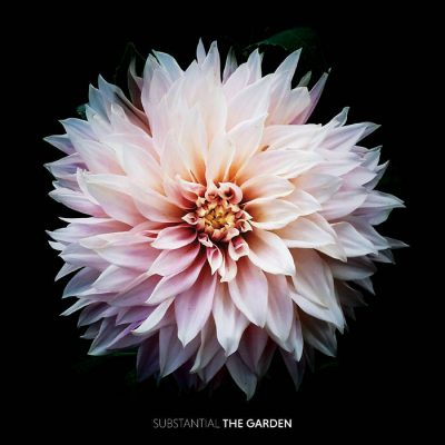Substantial – The Garden (WEB) (2018) (FLAC + 320 kbps)
