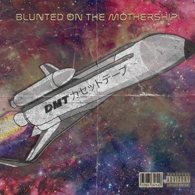 VA – Blunted On The Mothership (WEB) (2019) (320 kbps)