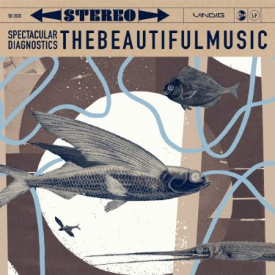 Spectacular Diagnostics – thebeautifulmusic (WEB) (2020) (320 kbps)