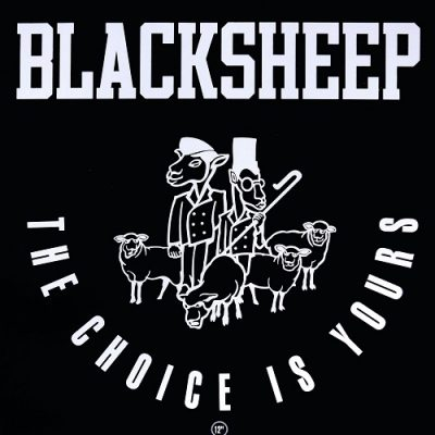Black Sheep – The Choice Is Yours (VLS) (1991) (FLAC + 320 kbps)