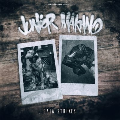 Junior Makhno – Gaia Strikes (WEB) (2020) (320 kbps)