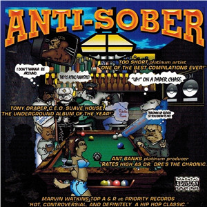 VA – Anti-Sober (CD) (1999) (FLAC + 320 kbps)