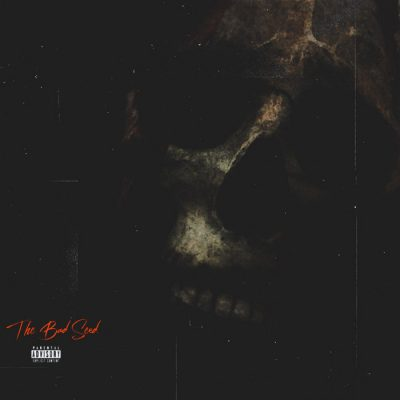 The Bad Seed – The Bad Seed (WEB) (2021) (320 kbps)