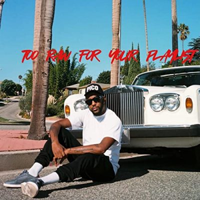Polyester The Saint – Too Raw For Your Playlist (WEB) (2021) (320 kbps)